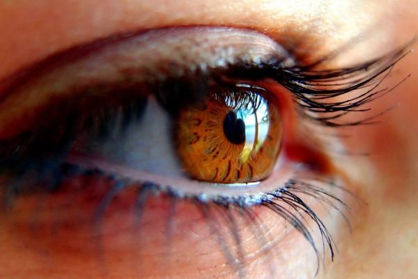 Wimpern- u. Augenbrauenfärben u. Augenbrauenkorrektur