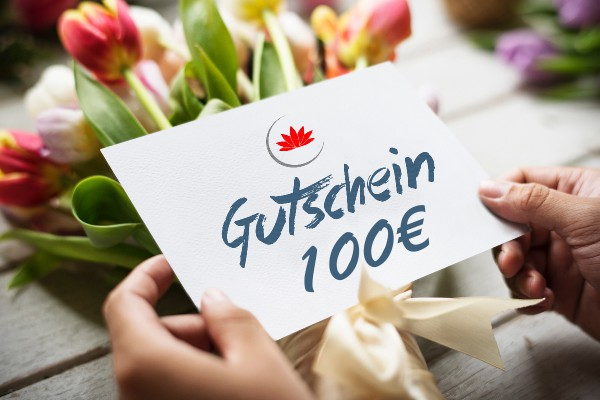 100€ Gutschein